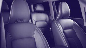 Distinctive-Details-interior-leather-care